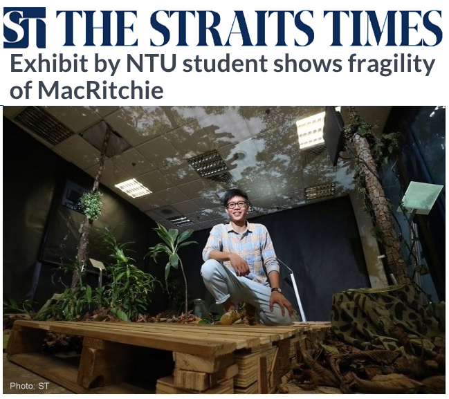 Straits Times 2015 - Exhibit by NTU student shows fragility of MacRitchie