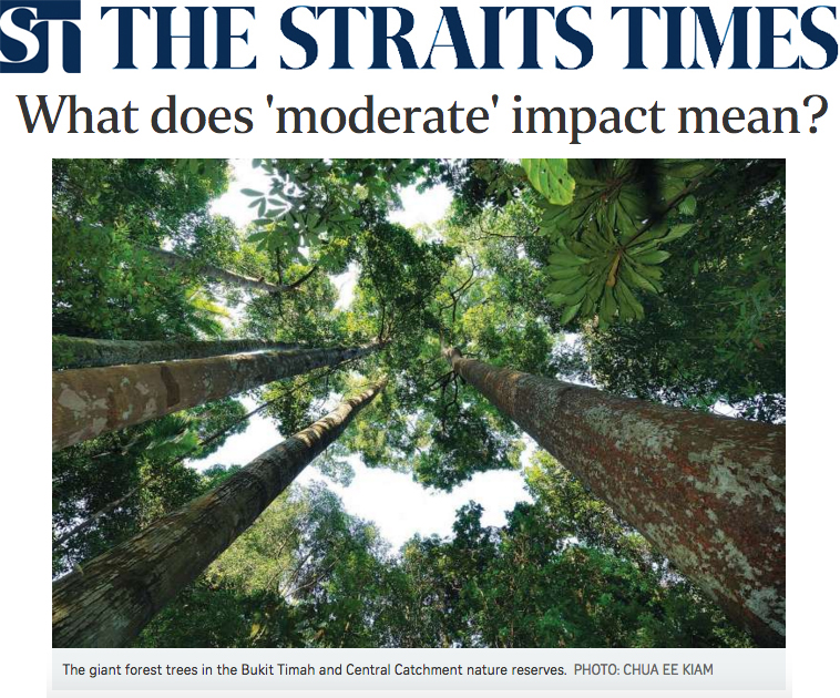 The Straits Times 2016 - What does 'moderate' impact mean?