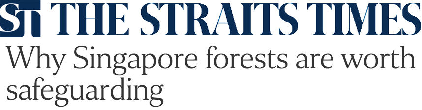 The Straits Times 2016 - Why Singapore forests are worth safeguarding