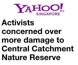 Yahoo News 2016 - Activists concerned over more damage to Central Catchment Nature Reserve