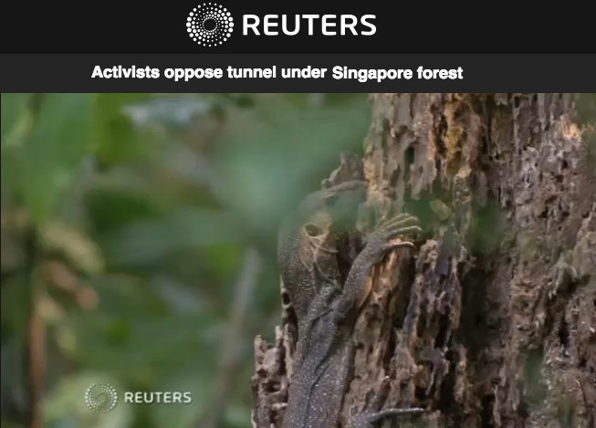 REUTERS News 2016 - Activists oppose tunnel under Singapore forest