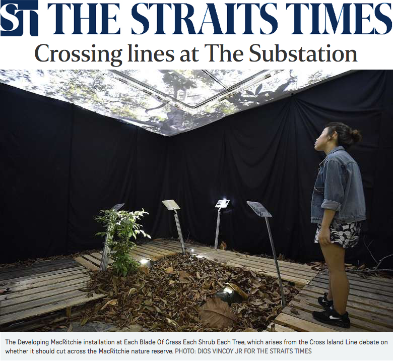 The Straits Times News 2016 - Crossing lines at The Substation