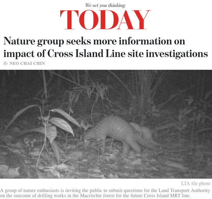 Today Online - Nature group seeks more information on impact of Cross Island Line site investigations